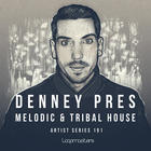 Denney  royalty free house samples  tribal house drum loops  house bass   classic synth loops  trippy sfx  tense atmospheres