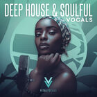 Royalty free vocal samples  house vocal stems  female acapellas  deep house female vocal leads and adlibs