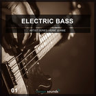 Electric bass 1 cover