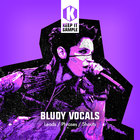Keep it sample   bludy vocals artwork 1000x1000 web