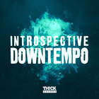 Thicksounds introspectivedowntempo1000x1000 web