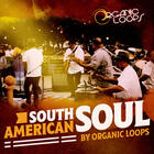 Royalty free latin samples  beautiful keys and electric guitar loops  south american percussion grooves  live drum loops
