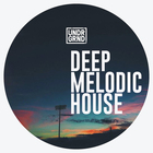Deep melodic house 1000 web