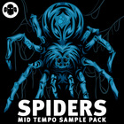 Gs spiders mid tempo sounds 1000 web