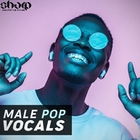 Sharp   male pop vocals 1000 web
