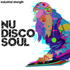 2 nudiscosoul wav  midi  production kits  disco  soul  funk  retro  guitars  bass  drums  piano and synths 1000 web