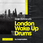 Royalty free drum samples  jungle drum loops  live drum loops  jungle breakbeat grooves  jungle drummer at loopmasters.com