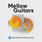Mellow guitars edm ghost production sample pack 1000 web