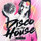 Royalty free disco samples  house drums  disco vocal phrases  electric bass loops  disco guitar and percussion loops  classic sound of disco at loopmasters.com