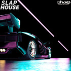 Sharp slap house web