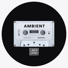 Ambient 1000 web
