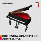 Class a samples orchestra grand piano feelin 1000 1000