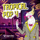 Singomakers tropical pop 4 1000 1000
