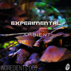 Experimental ambient   frinla1000x1000 web